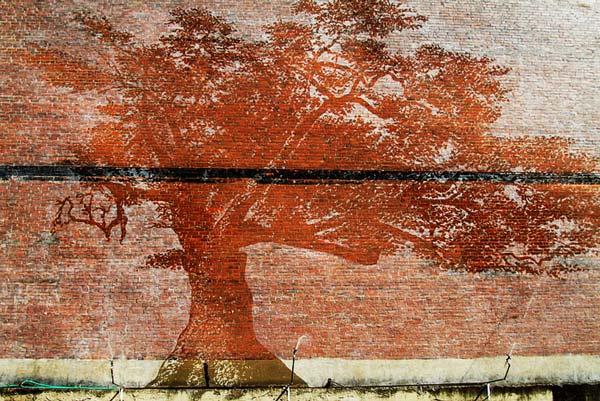 Εντυπωσιακή τοιχογραφία φαίνεται μόνο στη βροχή!