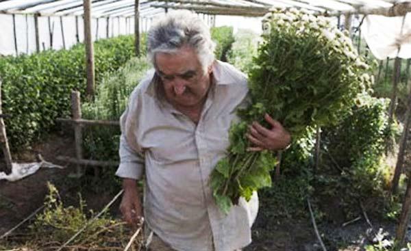 perierga.gr - Γνωρίστε τον φτωχότερο πρόεδρο κράτους στον κόσμο!