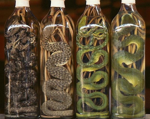 Perierga.gr - Τα πιο παράξενα αλκοολούχα ποτά