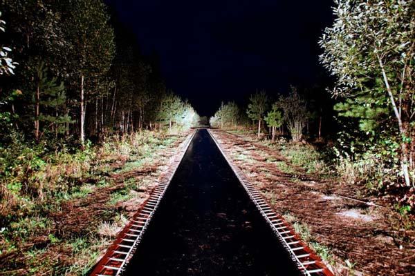 perierga.gr - Απίθανο μονοπάτι-τραμπολίνο στο δάσος!