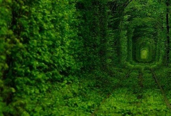 perierga.gr - Πολύχρωμα φυσικά τούνελ που εντυπωσιάζουν