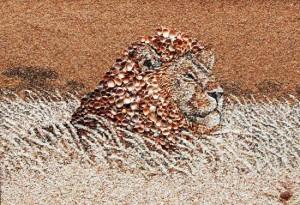 Εντυπωσιακά πορτρέτα με άμμο και κοχύλια!
