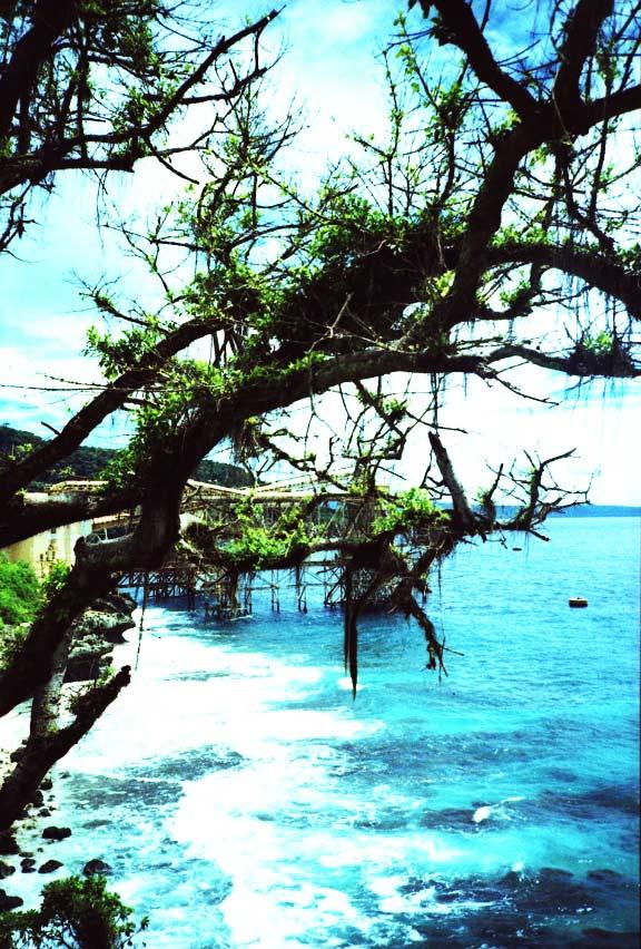 """perierga.gr - Το παραμυθένιο """"Νησί των Χριστουγέννων""""!"""