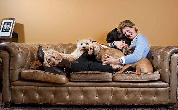 """perierga.gr - Ο """"Οίκος του Κοπρίτη"""" προσφέρει σκυλίσια ζωή!"""