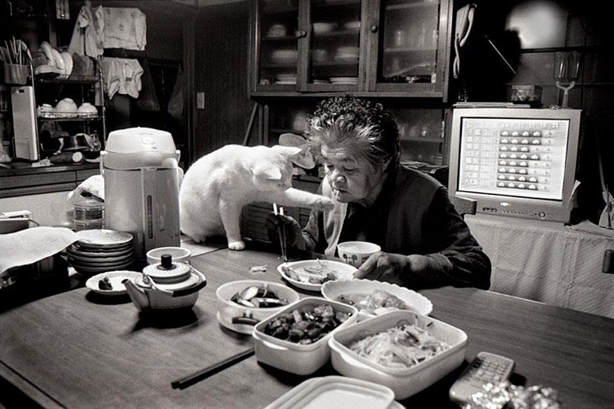 perierga.gr - Σπάνια φιλία γιαγιάς με μια παράξενη γάτα!