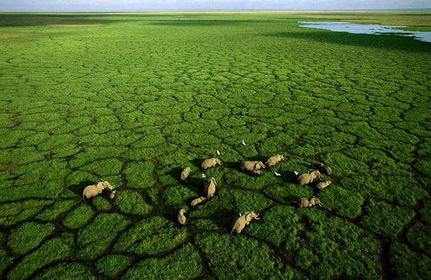 perierga.gr - Η εκπληκτική ομορφιά της Αφρικής από ψηλά!