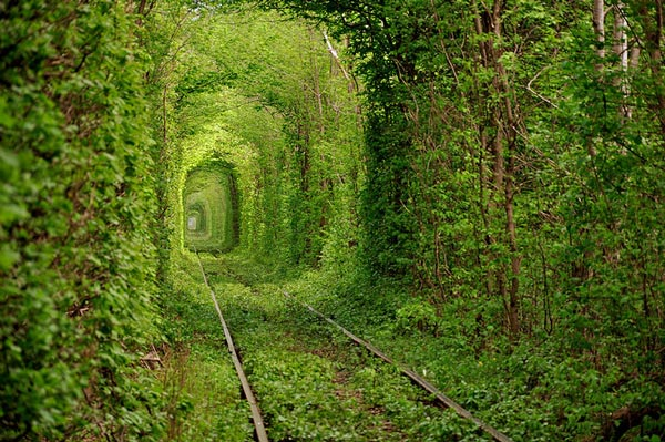 perierga.gr - Μαγευτικές εικόνες της φύσης σε όλο τον πλανήτη!