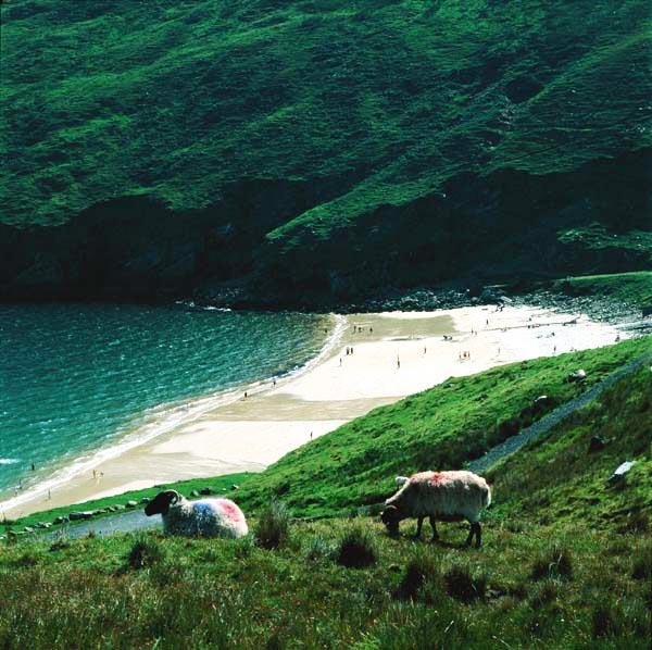 perierga.gr - Achill Island: Το εκπληκτικό... άγνωστο νησί της Ιρλανδίας!