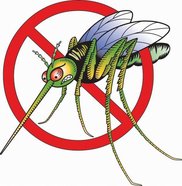 Ξεφορτωθείτε τα κουνούπια πριν καν εμφανιστούν!!!