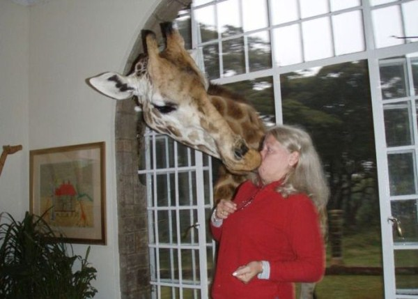 perierga.gr - Γυναίκες VS ζώα: Η επίθεση...