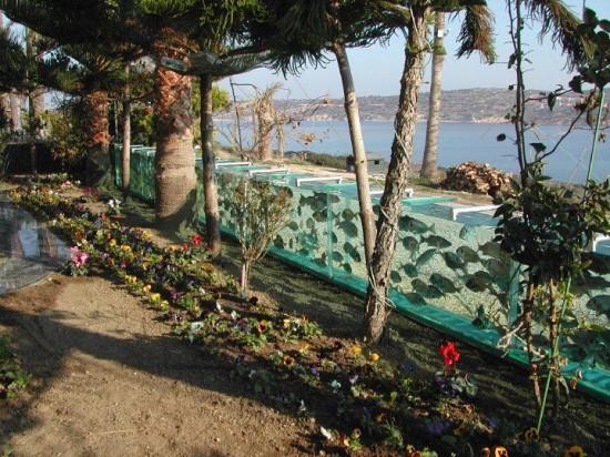 perierga.gr - Αντικατέστησε το φράχτη του σπιτιού του με ενυδρείο!