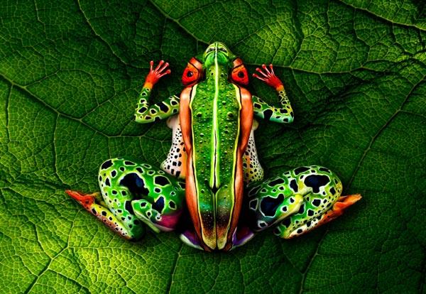 perierga.gr - Βλέπεις έναν βάτραχο; Δες καλύτερα!