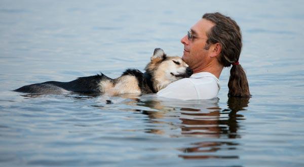 perierga.gr - Ο σκύλος που μας συγκίνησε έγινε 20 χρόνων!