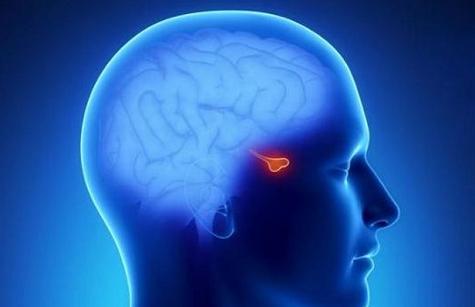 Perierga.gr - Εντοπίστηκε η πρωτεΐνη του στρες και της κατάθλιψης