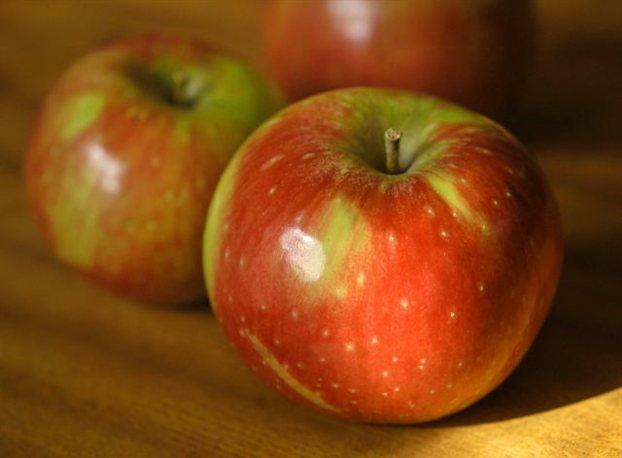 Perierga.gr - Η κλιματική αλλαγή αλλάζει τη γεύση των φρούτων!