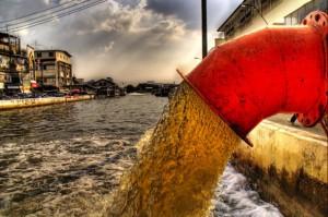 perierga.gr - Μικροσκοπική ζωή μέσα σε μια σταγόνα βρόμικου νερού!