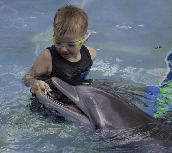 perierga.gr - Το παιδί και το δελφίνι: Μια συγκινητική ιστορία!