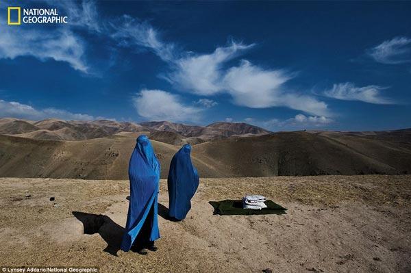 perierga.gr - 125 χρόνια National Geographic!