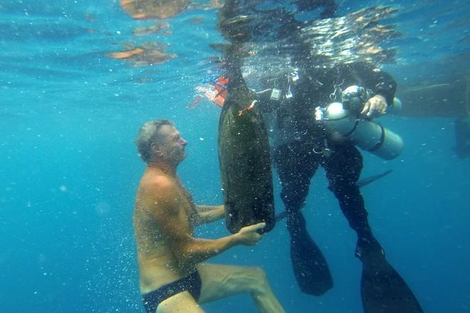 "perierga.gr - ""Η άβυσσος του κρασιού"": Μια υποβρύχια... κάβα!"