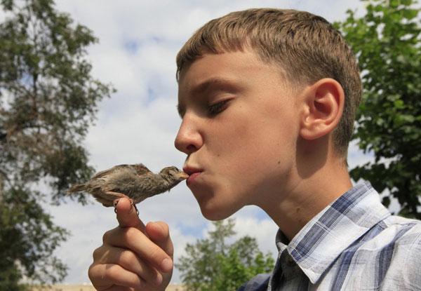 perierga.gr - Τρυφερή φιλία με ένα άγριο σπουργίτι!