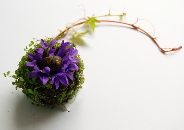 perierga.gr - Ανατομία ανθρώπινου σώματος με… λουλούδια!