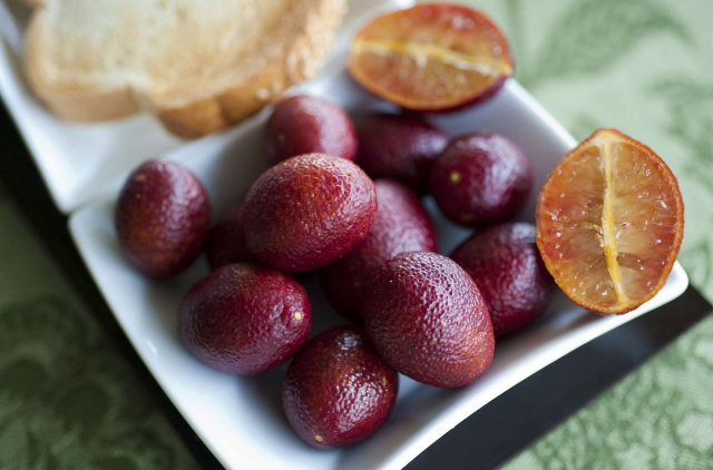 perierga.gr - Bood lime: Κατακόκκινο... λάιμ!