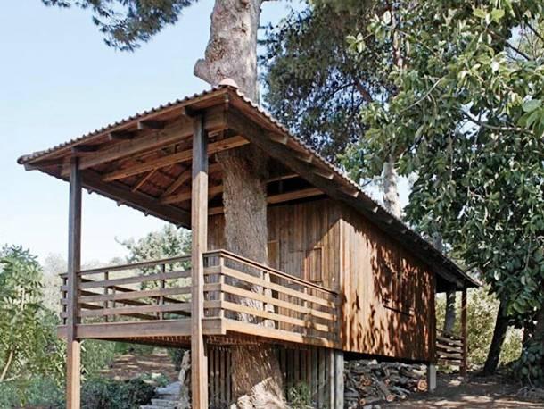 perierga.gr - Απίθανα κτήρια ενσωματώνονται πλήρως στη φύση!