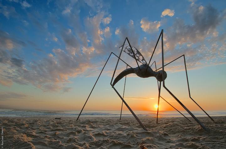 perierga.gr - Παράξενα γλυπτά σε παραλίες της Αυστραλίας!