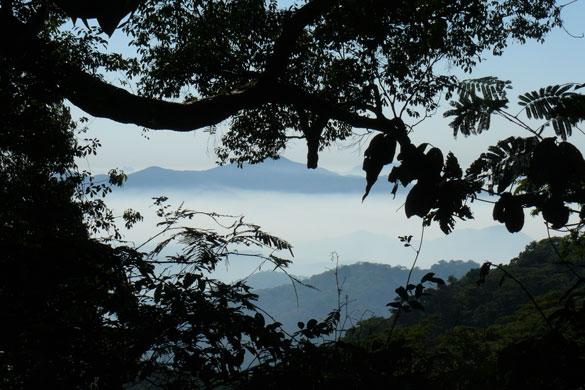 perierga.gr - «Χαμένος παράδεισος» στη Μοζαμβίκη ανακαλύφθηκε χάρη στo Google Earth!