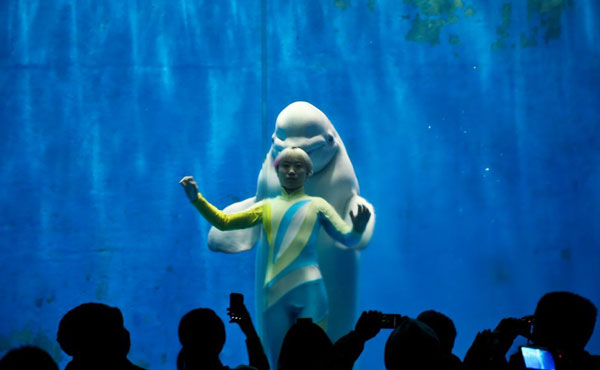 perierga.gr - Χορεύοντας με φάλαινες μπελούγκα!