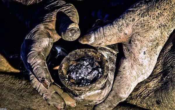 perierga.gr - Ο άνθρωπος που δεν έχει πλυθεί εδώ και 60 χρόνια!
