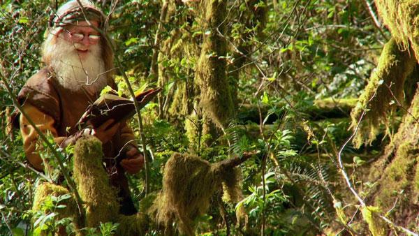 perierga.gr - Ζει σε δέντρο, χωρίς παπούτσια και βουρτσίζει τα δόντια του με ένα κουκουνάρι!