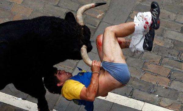 perierga.gr - Oι καλύτερες εικόνες με ζώα για το 2013 από τη Yahoo!