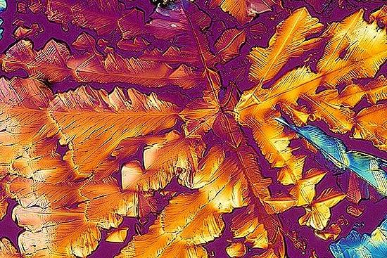 perierga.gr - Καθημερινά αντικείμενα στο μικροσκόπιο