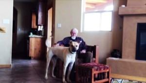 perierga.gr -Δεν μιλά λόγω Αλτσχάιμερ αλλά μόλις δει τον σκύλο του… όλα αλλάζουν!