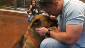 perierga.gr - Η συγκινητική επανασύνδεση σκυλίτσας με το αφεντικό της! (βίντεο)