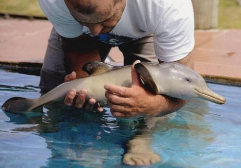 perierga.gr - 9 αξιαγάπητα μωρά του πλανήτη Γη!