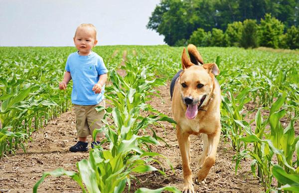 perierga.gr - Αυτό το μωρό είναι αχώριστο με τον σκύλο του!