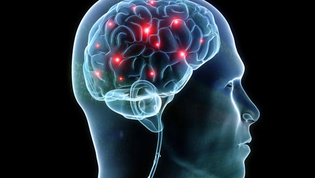 perierga.gr - Μύθοι και αλήθειες για τον εγκέφαλο!