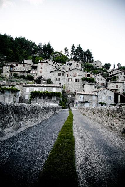 perierga.gr - «Πράσινο χαλί» διατρέχει ολόκληρο χωριό!