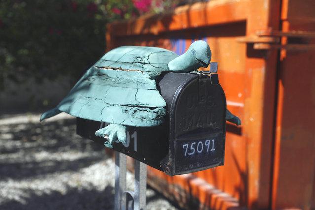 perierga.gr - Τα ασυνήθιστα γραμματοκιβώτια της Φλόριντα!