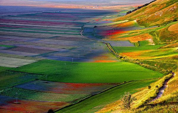 perierga.gr - Castelluccio: Η πολύχρωμη κοιλάδα της Ιταλίας!