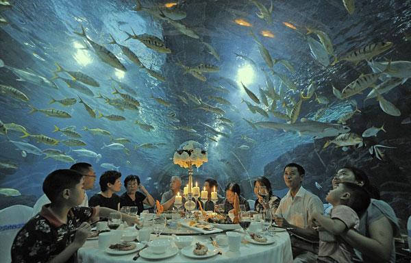 perierga.gr - Υποβρύχιο δείπνο μέσα στο ενυδρείο!