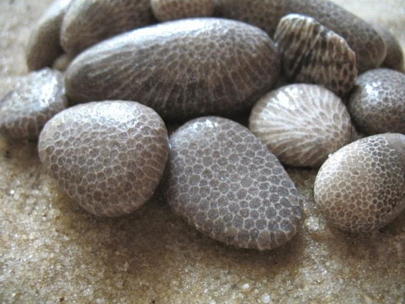 perierga.gr - Παράξενα μοτίβα πάνω σε πέτρες!