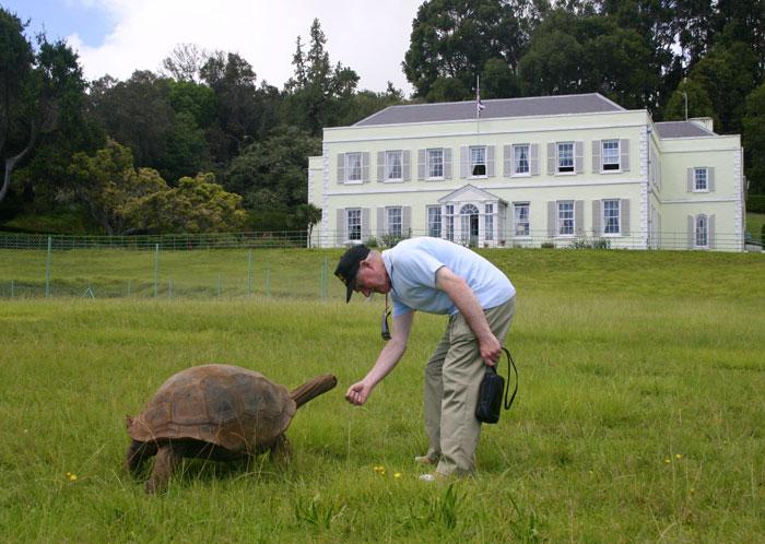 perierga.gr - 182 ετών χελώνα, τότε και τώρα!