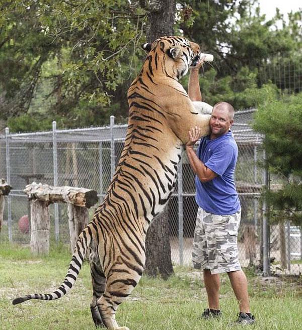 perierga.gr - Τυφλός άντρας βρήκε νόημα στα άγρια ζώα!