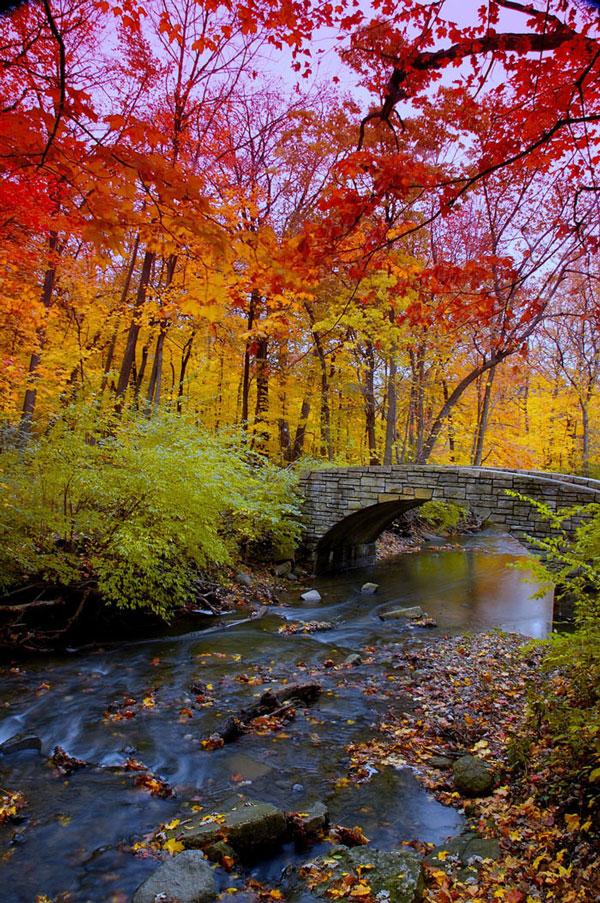 perierga.gr - Τα χρώματα του φθινοπώρου εντυπωσιάζουν!