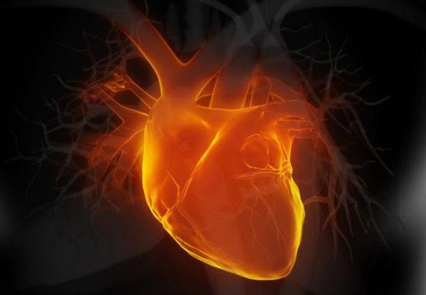 Perierga.gr - Μεταμόσχευση «νεκρής» καρδιάς