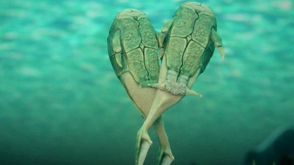 perierga.gr - Αρχαίο ψάρι από τη Σκωτία το ζώο που ανακάλυψε το σεξ!