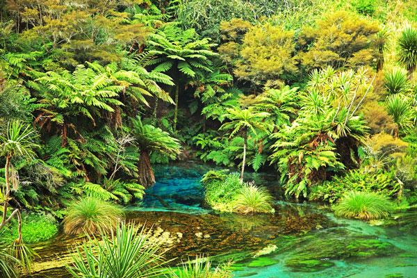 perierga.gr - Ο εξωτικός ποταμός της Νέας Ζηλανδίας